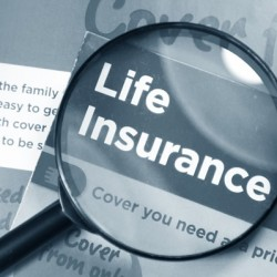 life-insurance-movement-details