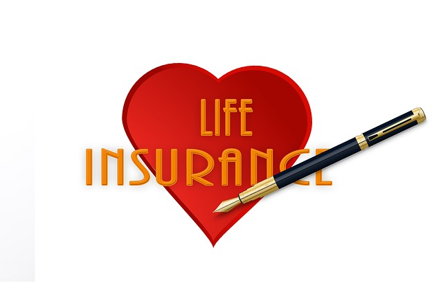Affordable Life Insurance Plan