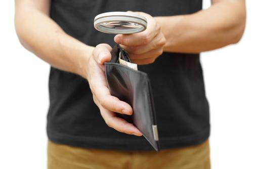 insurance deals light wallet